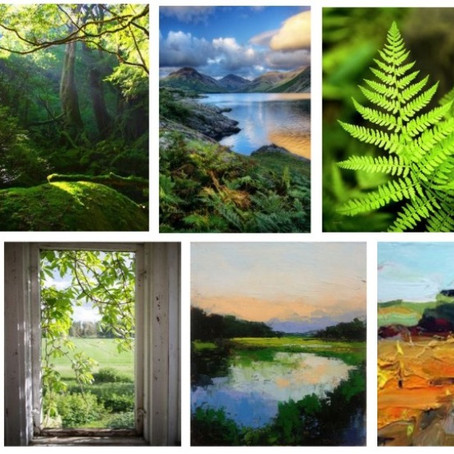 My home stories: creating my biophilic palette - part 2, sitting room
