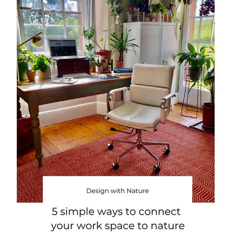 Biophilia: 5 simple ways to connect your work space to nature