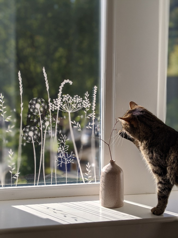 delicate grasses and flowers window film cat playing with twig