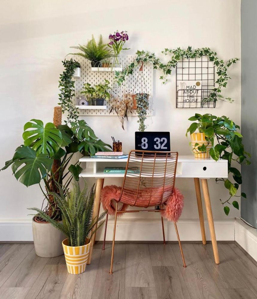 plants in work space peg board plant holder retro style desk