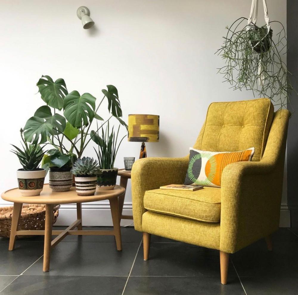 mid-century modern armchair coffee table house plants slate floor