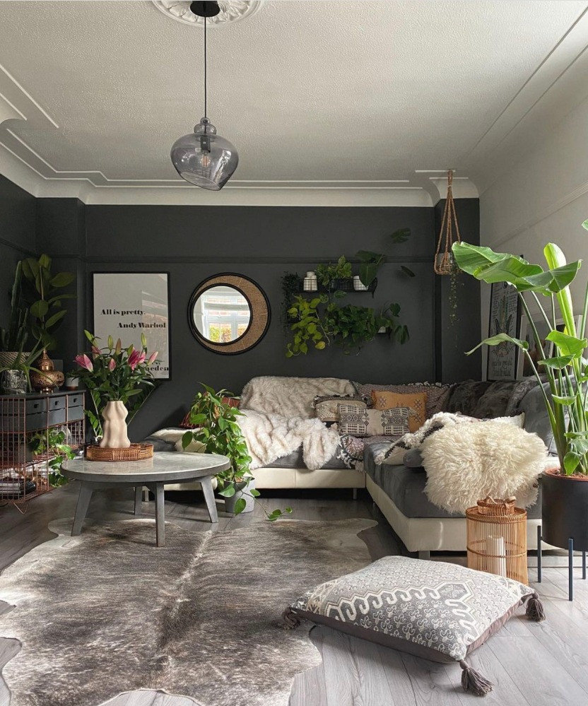 living room styled with plants plant shelf