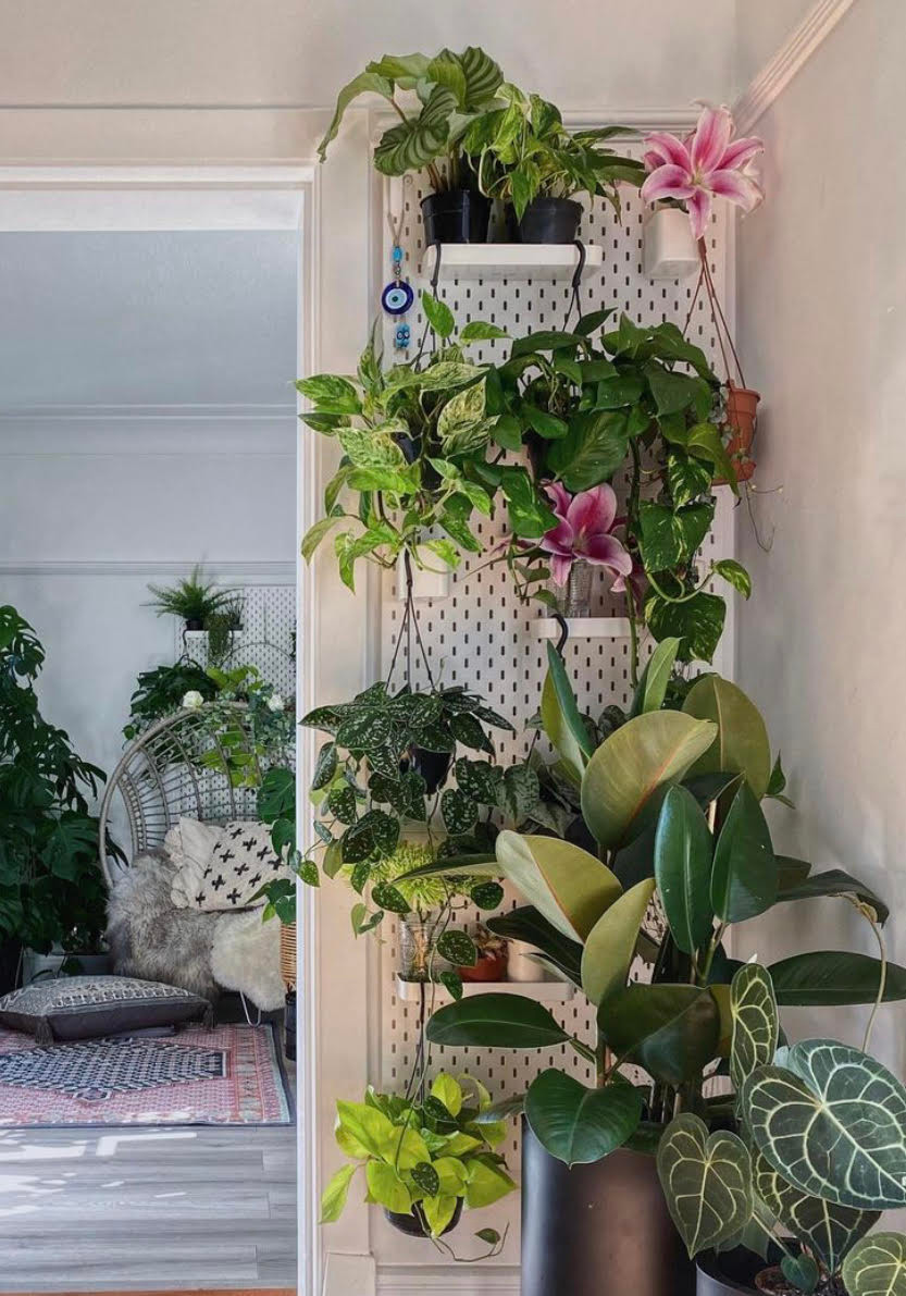 ikea peg board styled with plants
