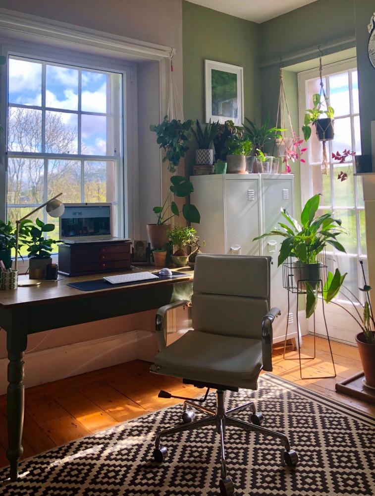 home office study green decor plants desk under window