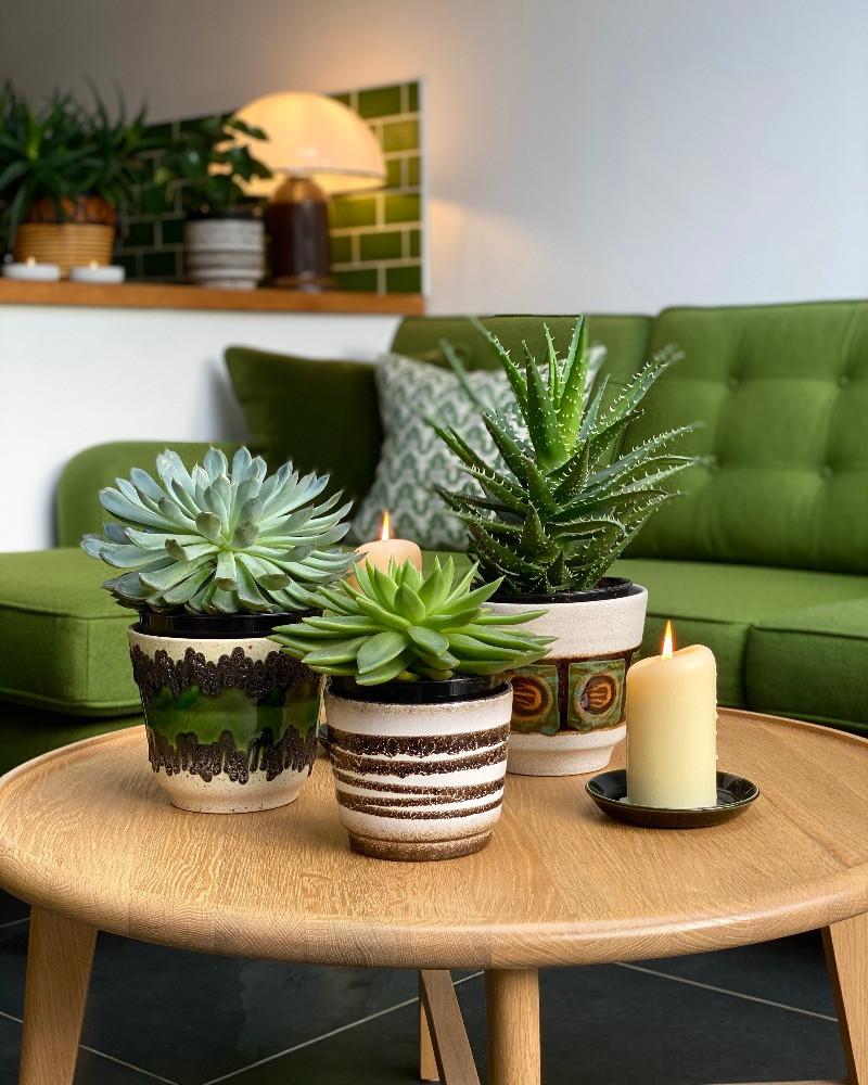 mid-century pottery oak coffee table green sofa house plants