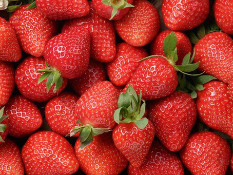 DAWR Horticulture Exports Program – Interim control measures for the export of fresh strawberries!
