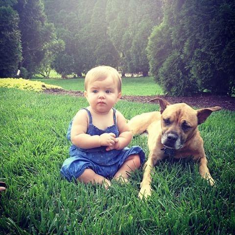 Nanny Dog.jpg