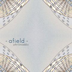 afield-3cities.jpg
