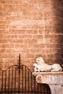 Valencia Cathedral, lion and gate