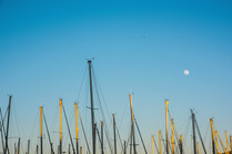 masts and the moon