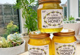 Holistic Honey - the sweetest Facial