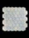 BLCMMPHX2X2%20(1)_edited.png