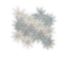 BLCMPP%20(1)_edited.png