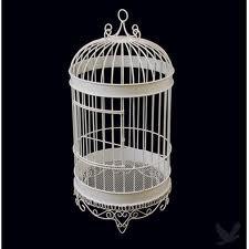 Birdcage - White
