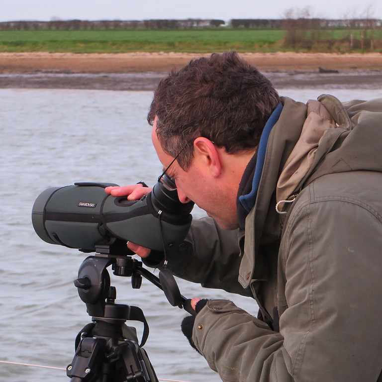 Birds by Barge an East Anglian wildlife spectacle