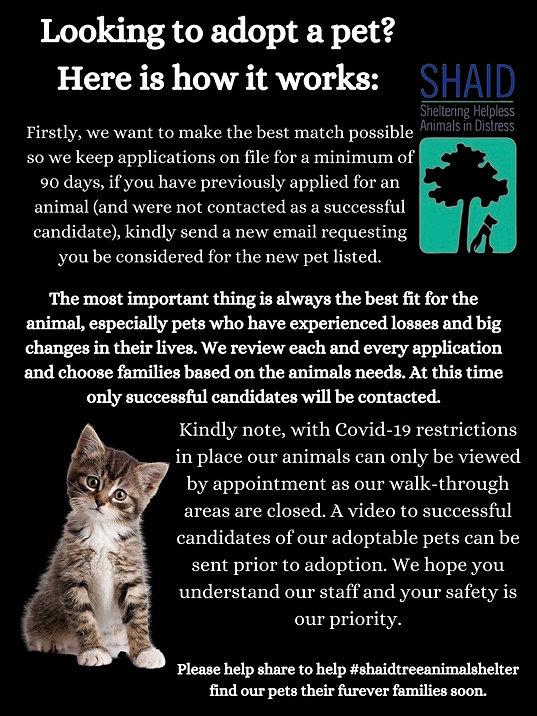 you would like to make Creature and Sky