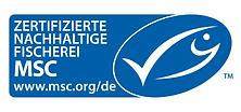 msc-logo-180117-1280x600.webp