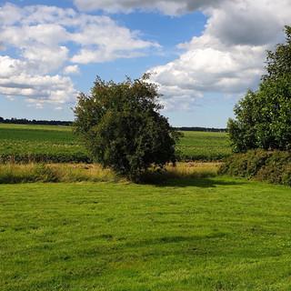 achtertuin met ruim zicht op de weilanden
