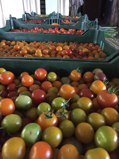 Summer Produce Share