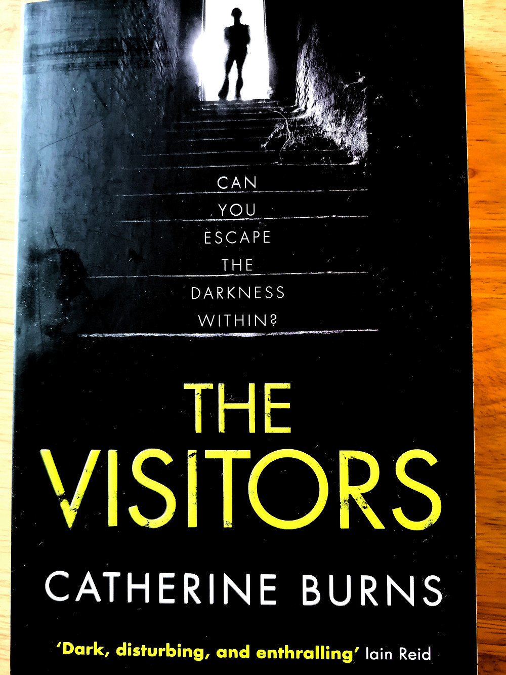 """Cover photo of Catherine Burns' 'The Visitors': featuring a figure at the top of a dark staircase with the subtitle """"Can you escape the darkness within?"""""""