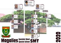 SMT_organogram-min