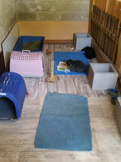 Milka et Bounty dans le Double Suite