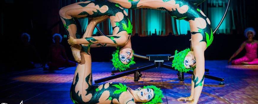 Cirque Division