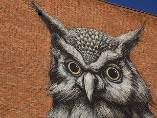 HTG Street Art Hasselt (3).JPG