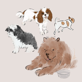 Pup Club