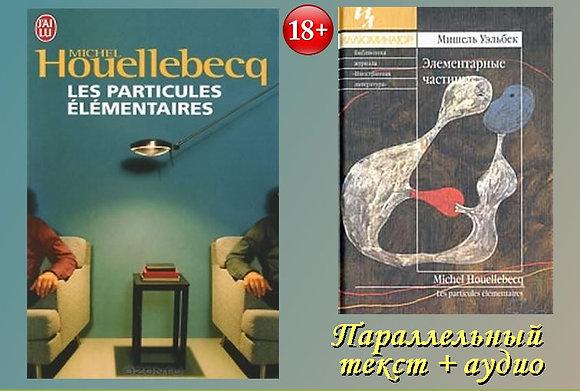 """Michel Houellebecq 'Les particules élémentaires"""" (Pack wC14)"""