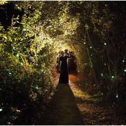 El sendero de las luciérnagas