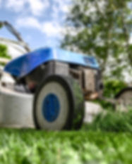 Supporto Lawn Mower Selection