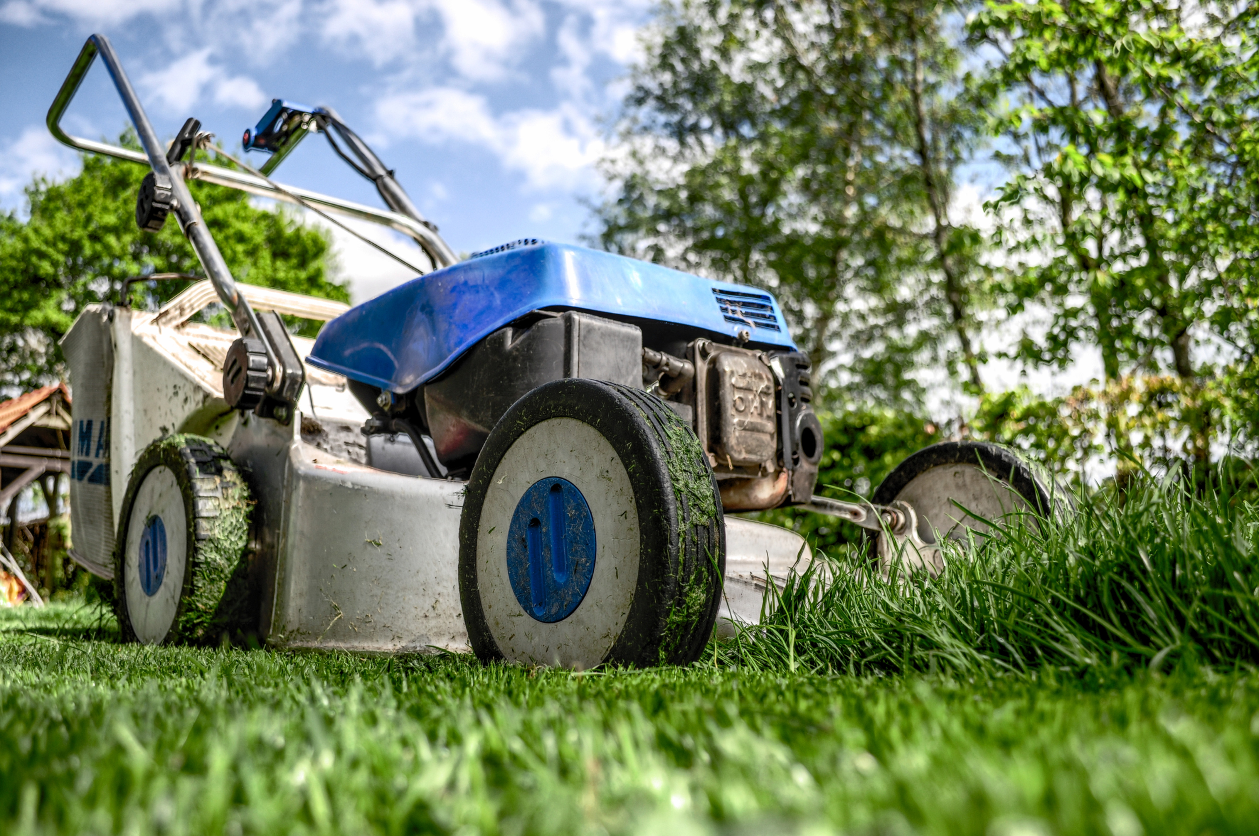 Lawn Mowing + Garden Waste Removal