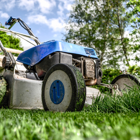 Landscaping Service in Houston