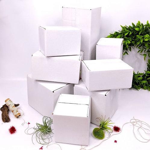 White Box 12x6x4