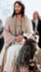 Jesus on donkey.jpg