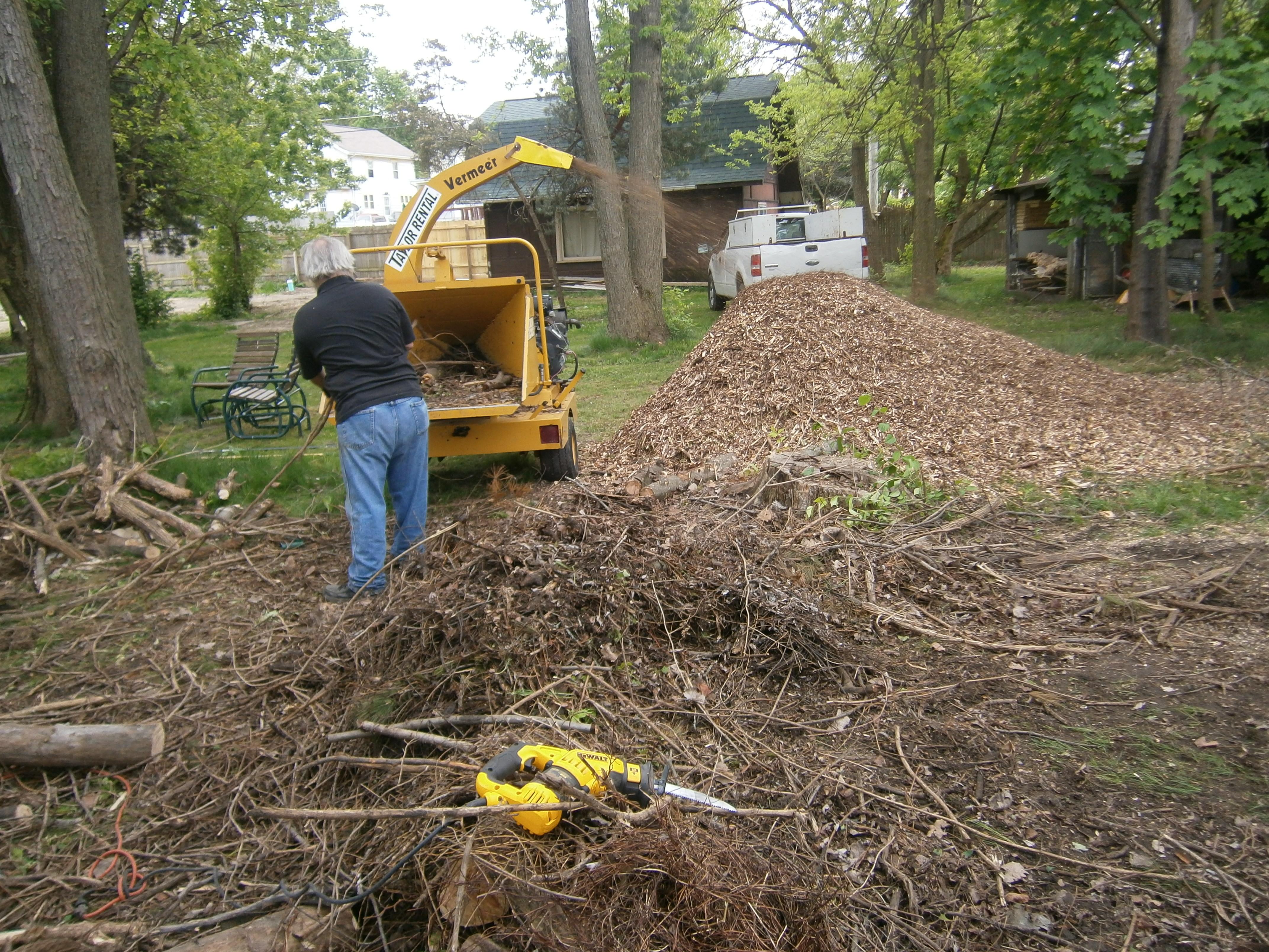 Tim shreds logs at Mary's Glen