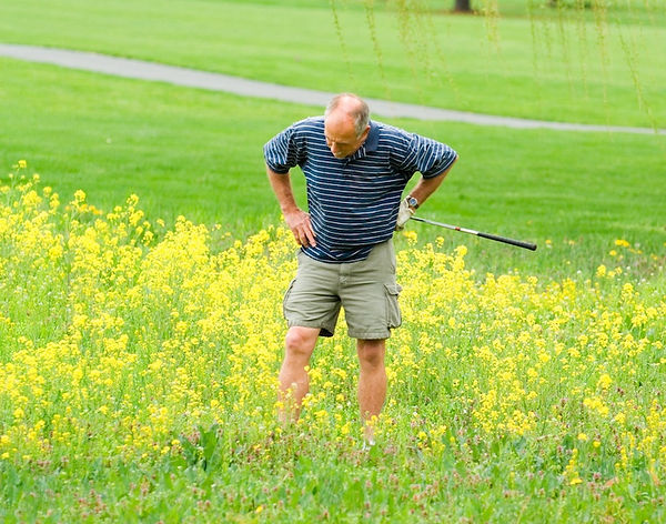 Looking-for-lost-golf-ball.jpg