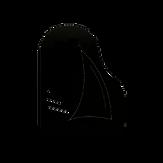 logo_pa_transp2.png