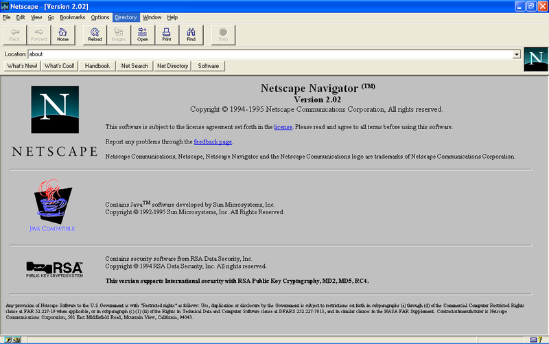 Page internet Netscape