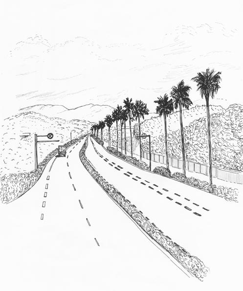 別府郊外の道路