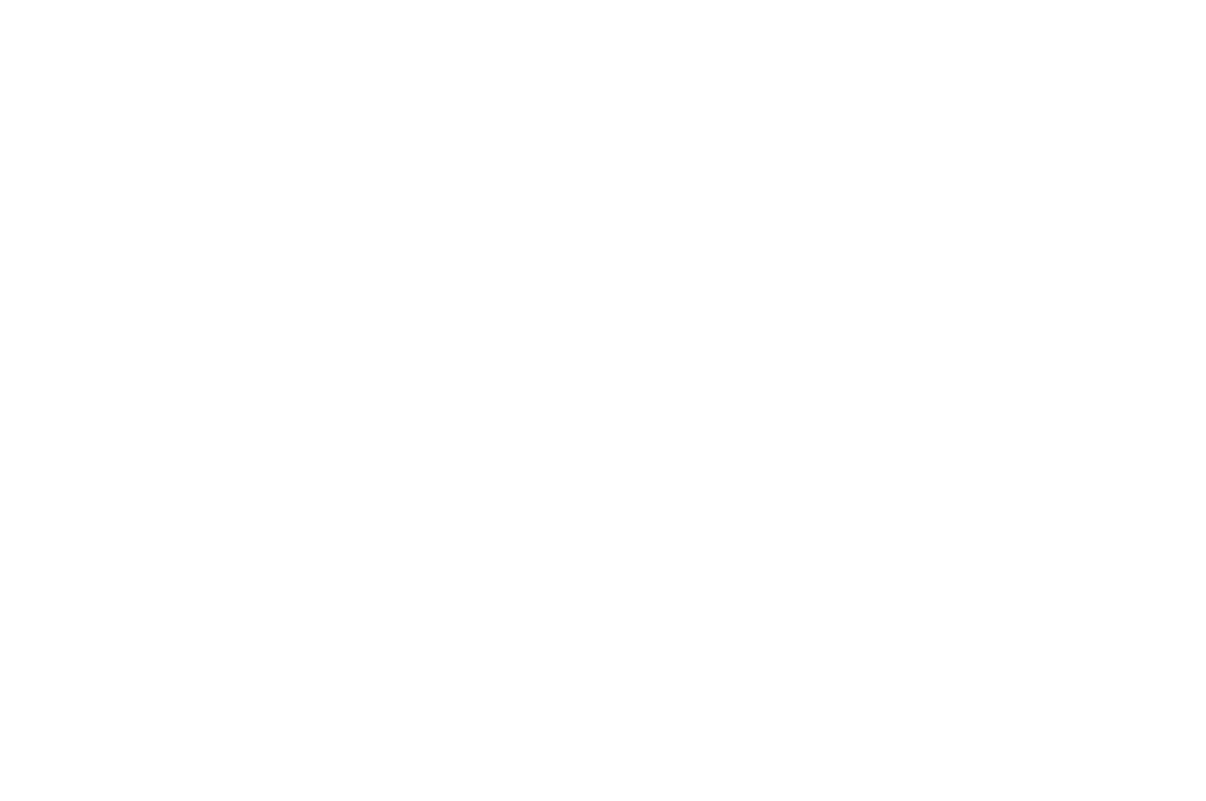 OFFICIAL SELECTION - The World Festival