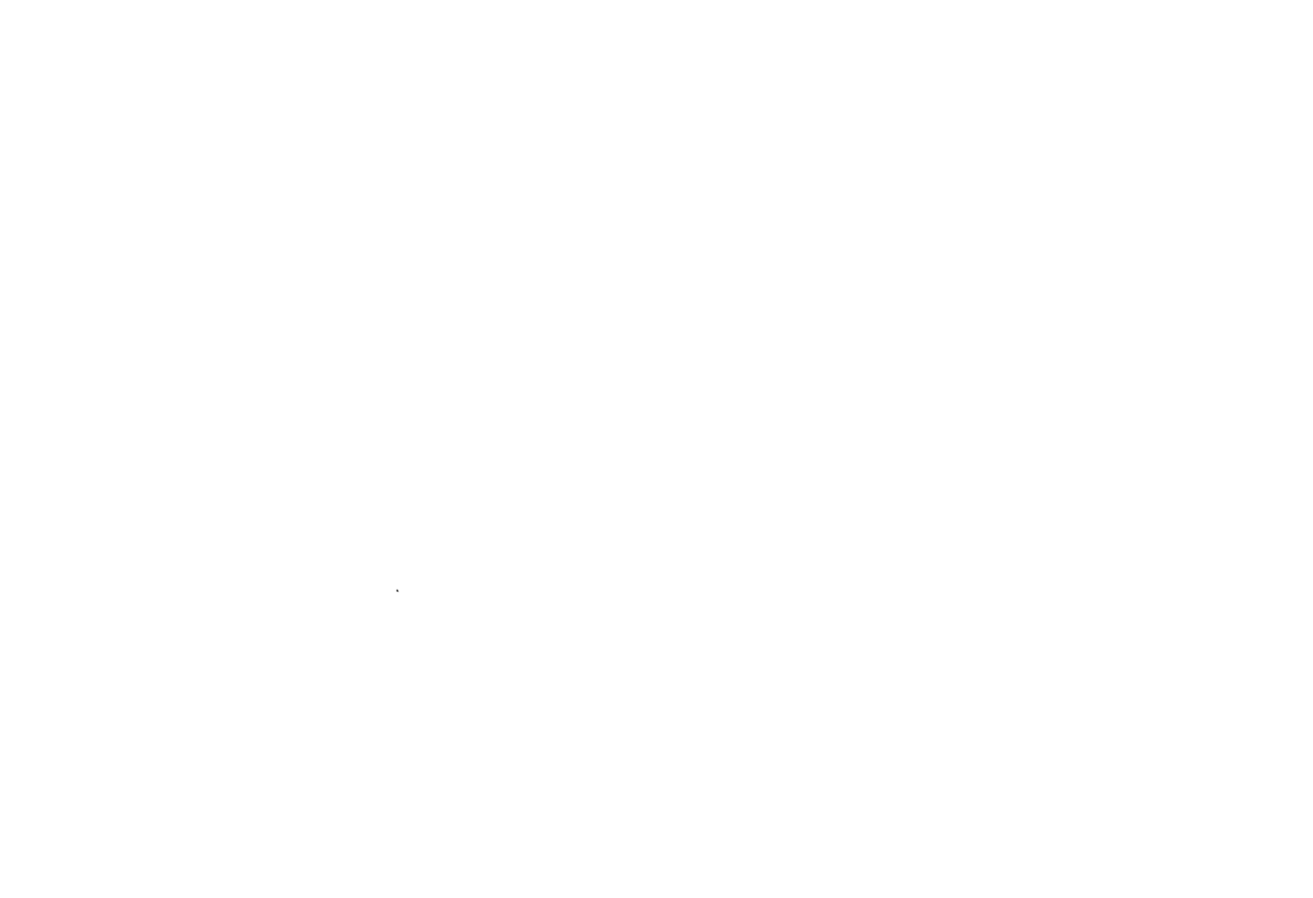 First-Time Filmmaker Sessions 2019 - whi