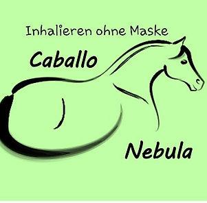 Pferde Sole Inhalation