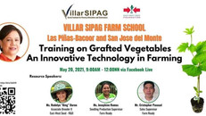 Training on Grafted Vegetables an Innovative Technology in Farming