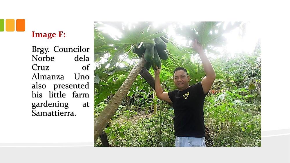 URBAN AGRICULTURE presentation Feb. 4, 2015.pdf_page_07.jpg