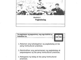Pagbabalag