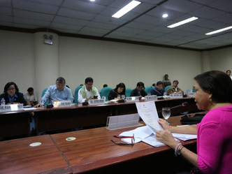 Senator Cynthia Villar Senate Probe on Frozen Meat