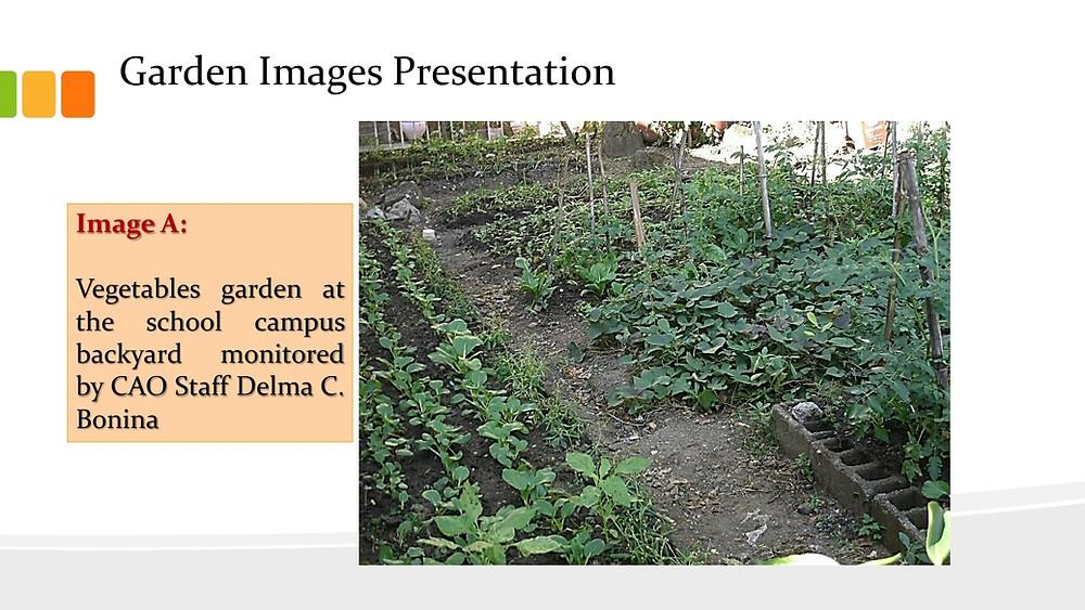 URBAN AGRICULTURE presentation Feb. 4, 2015.pdf_page_02.jpg