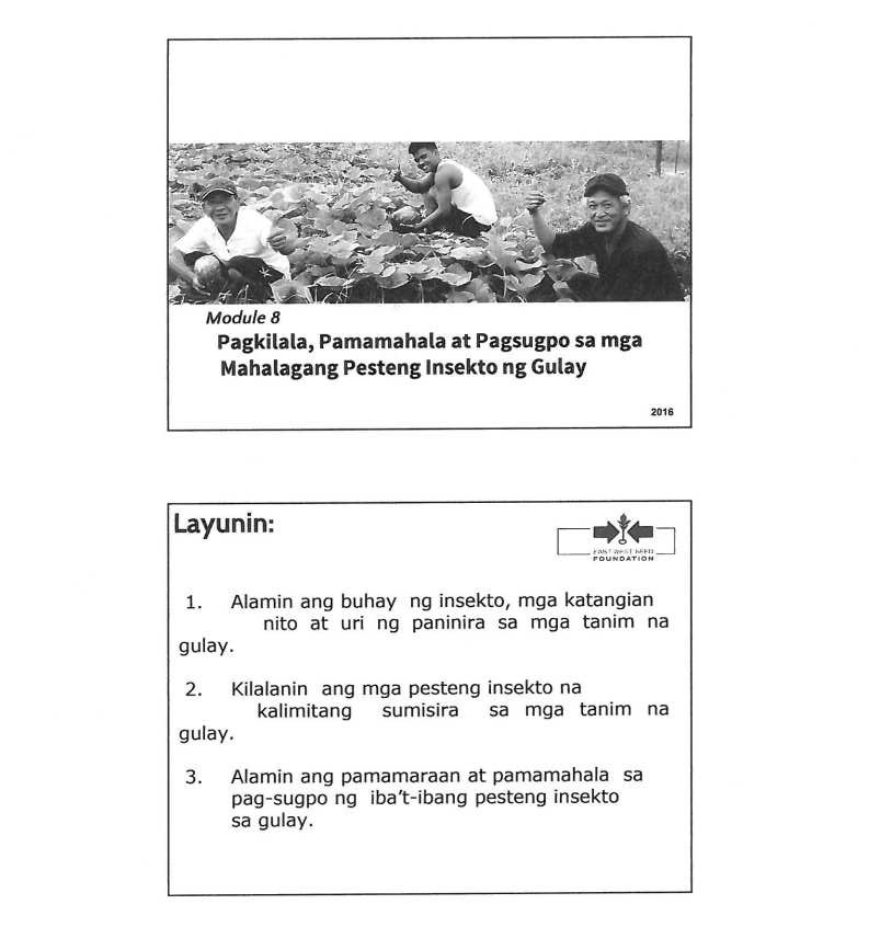 Pagkilala, Pamamahala at Pagsugpo sa mga Mahahalagang Pesteng Insekto ng Gulayjpg_Page1_Image1